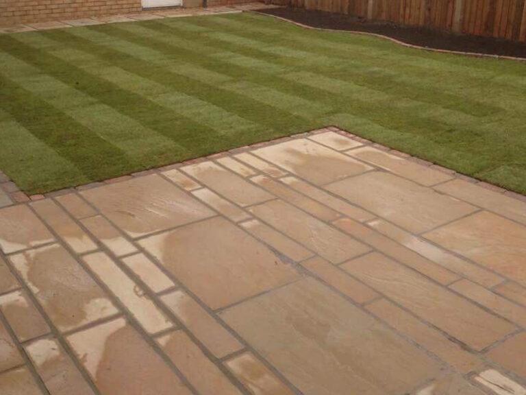 back garden grass